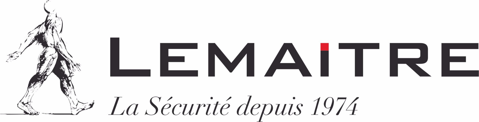 Lemaitre Logo (Rectangle)